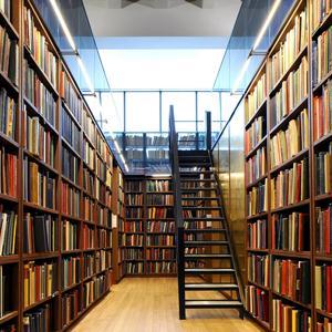 Библиотеки Бородино