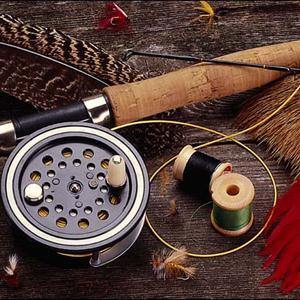 Охотничьи и рыболовные магазины Бородино